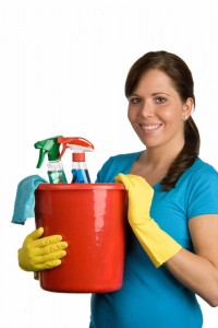 domestic-cleaning-services1
