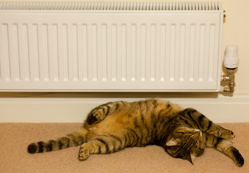 Central Heating System Maintenance